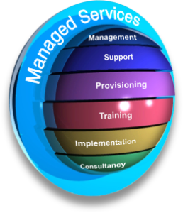 Everything You Always Wanted to Know About a Managed Service Provider but Were Afraid to Ask… well, Almost everything.
